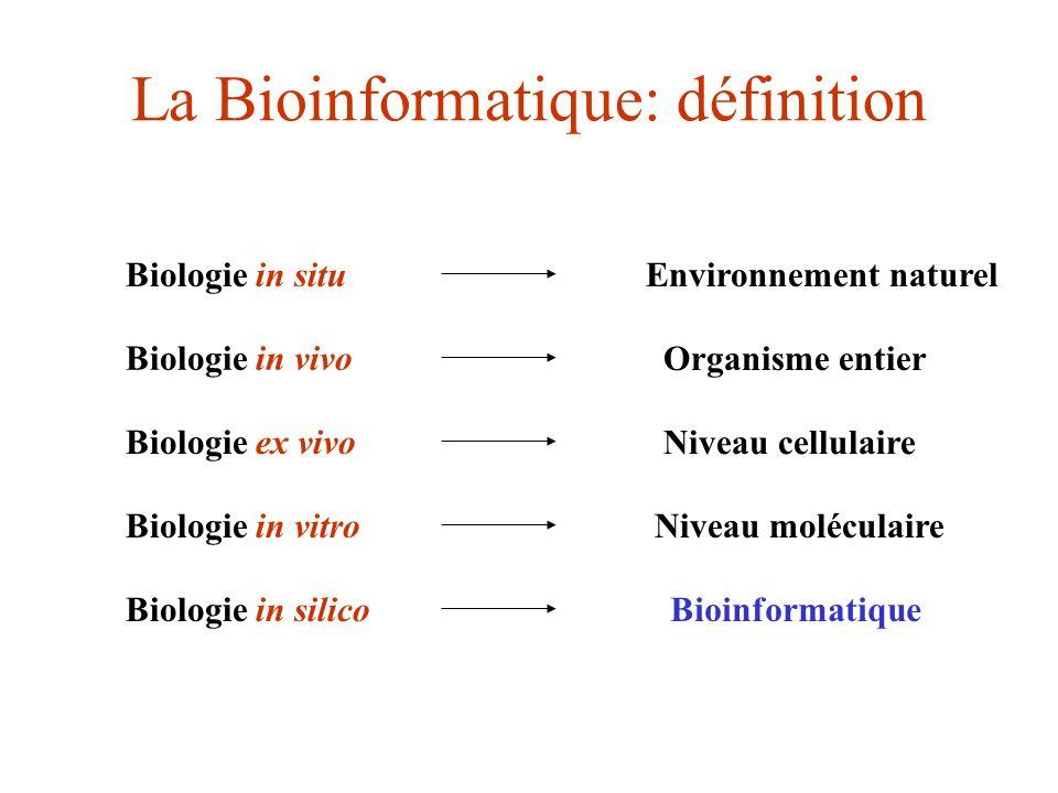 La Bioinformatique: définition