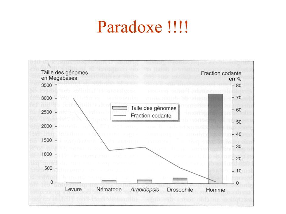 Paradoxe !!!!