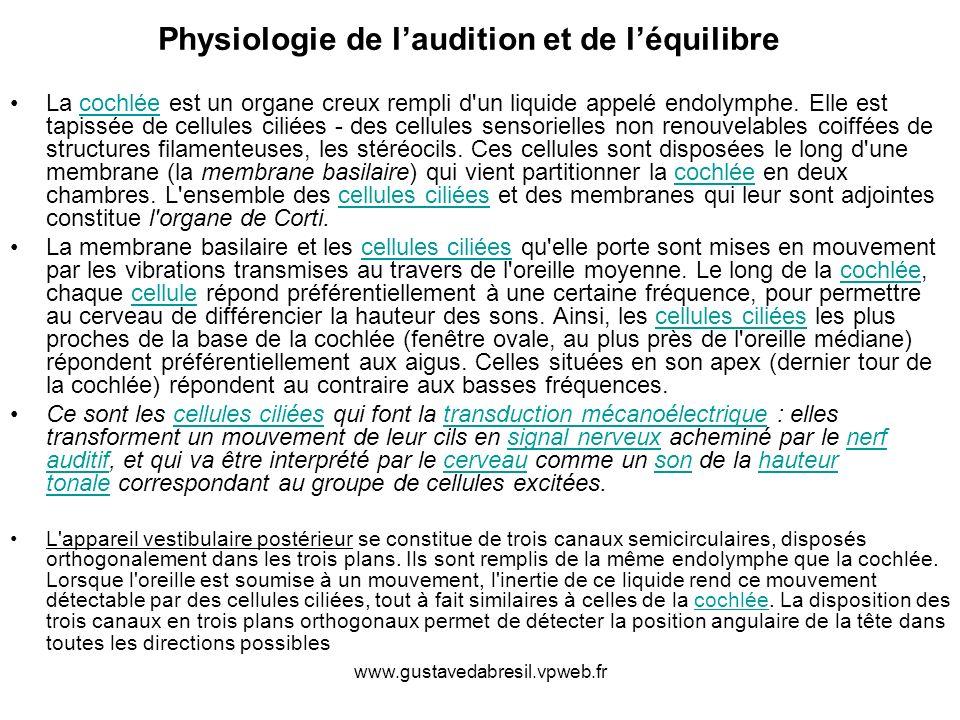 Physiologie de l'audition et de l'équilibre