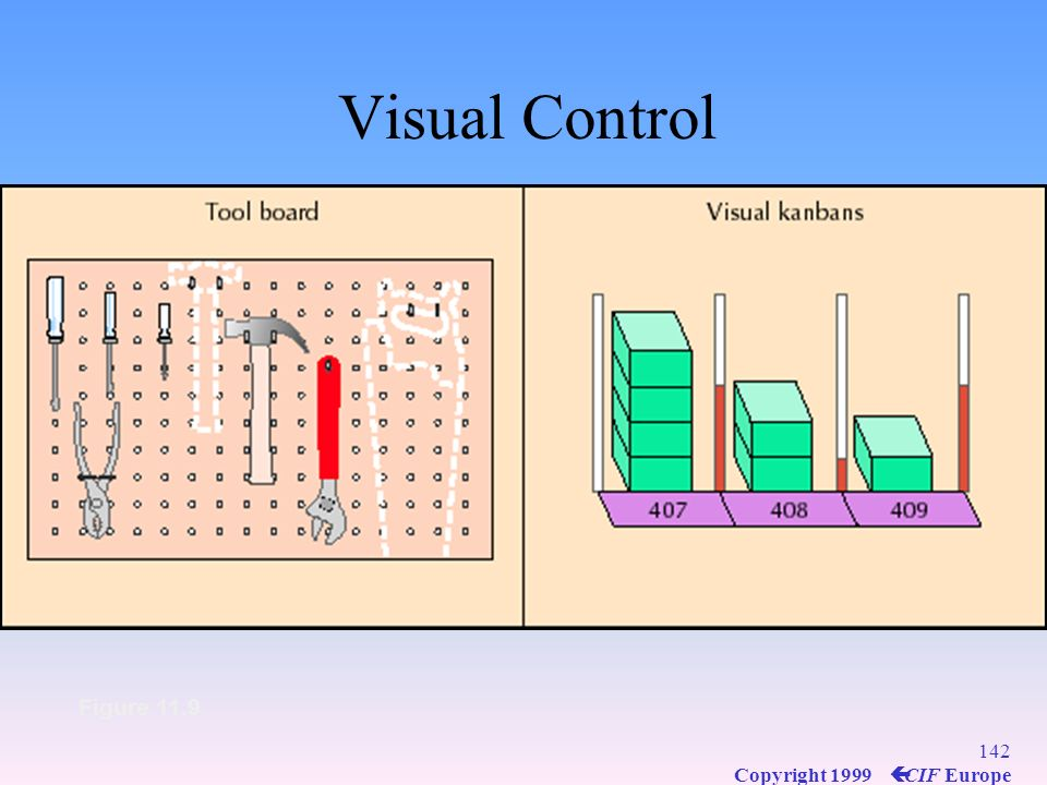 Visual Control Figure 11.9