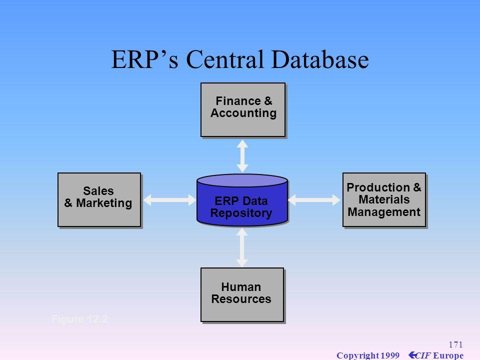 ERP's Central Database