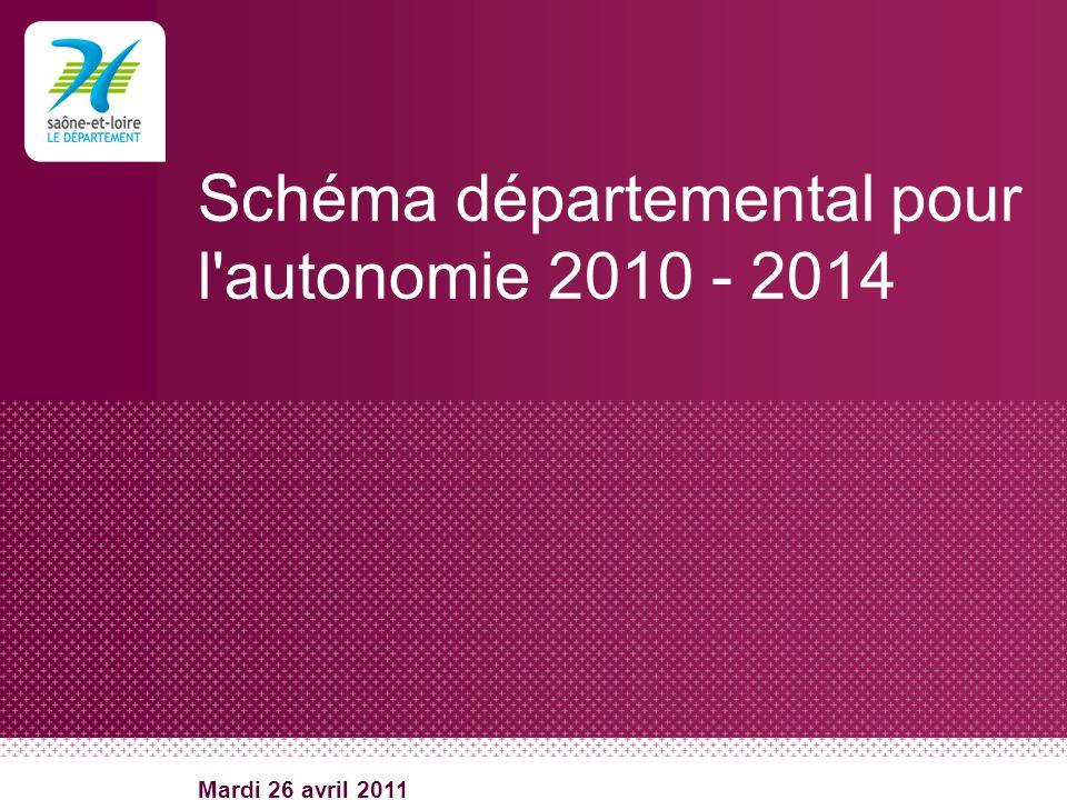 Schéma départemental pour l autonomie 2010 - 2014
