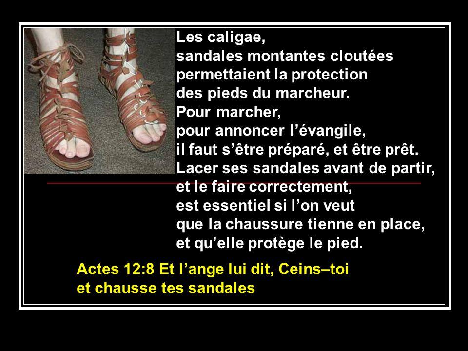sandales montantes cloutées permettaient la protection