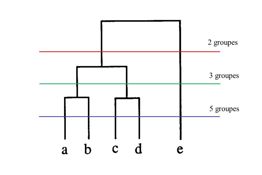 2 groupes 3 groupes 5 groupes
