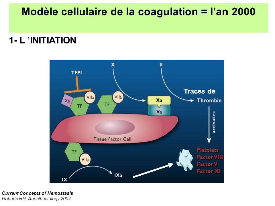 Modèle cellulaire de la coagulation = l'an 2000