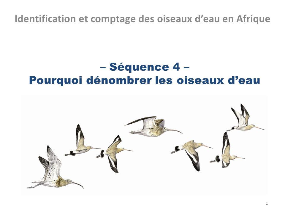 – Séquence 4 – Pourquoi dénombrer les oiseaux d'eau