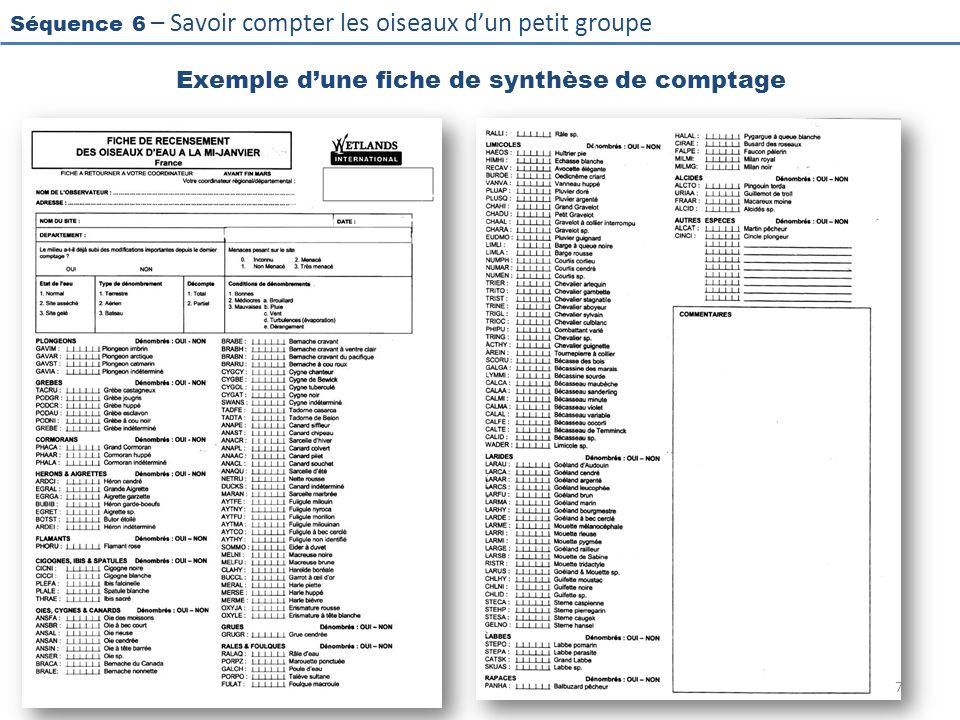 Exemple d'une fiche de synthèse de comptage