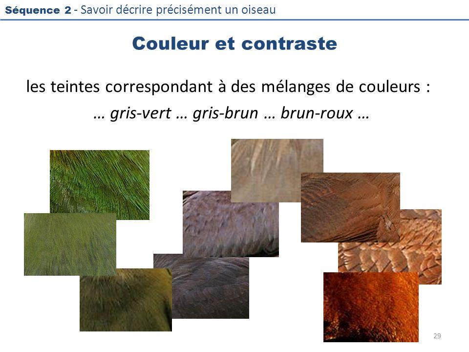 Couleur et contraste les teintes correspondant à des mélanges de couleurs : … gris-vert … gris-brun … brun-roux …