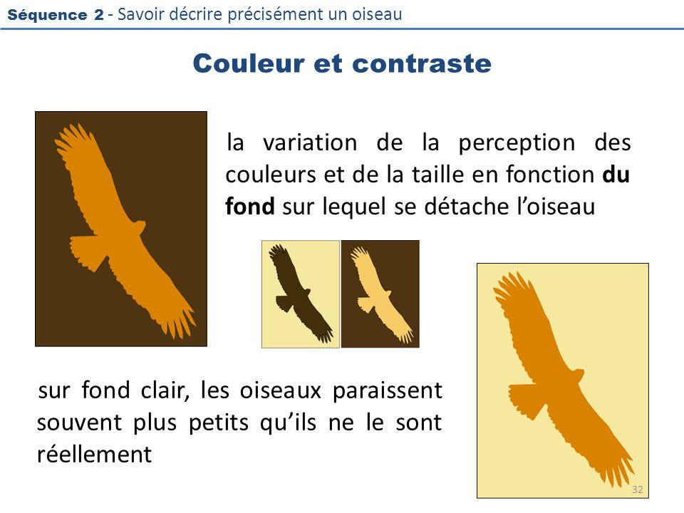 Couleur et contraste la variation de la perception des couleurs et de la taille en fonction du fond sur lequel se détache l'oiseau.