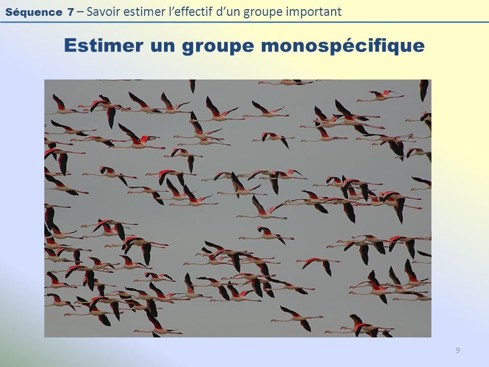 Estimer un groupe monospécifique