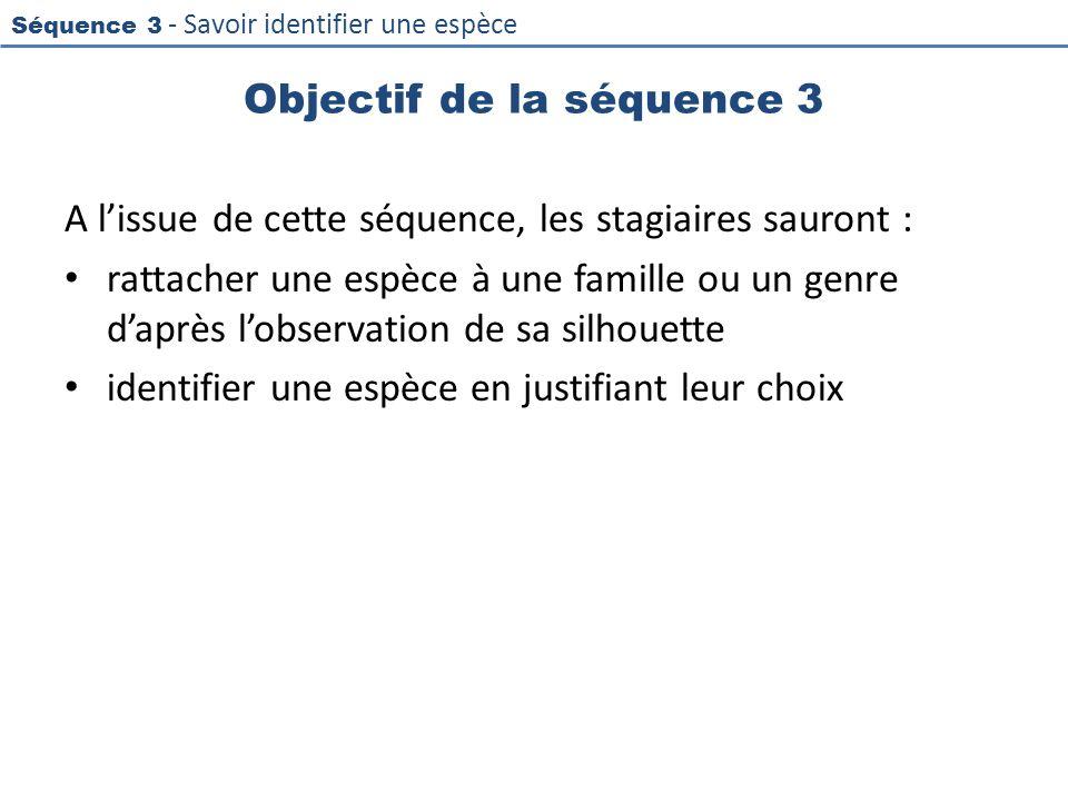Objectif de la séquence 3