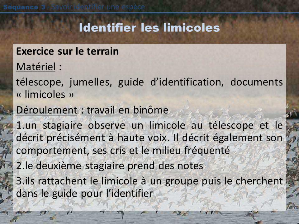 Identifier les limicoles