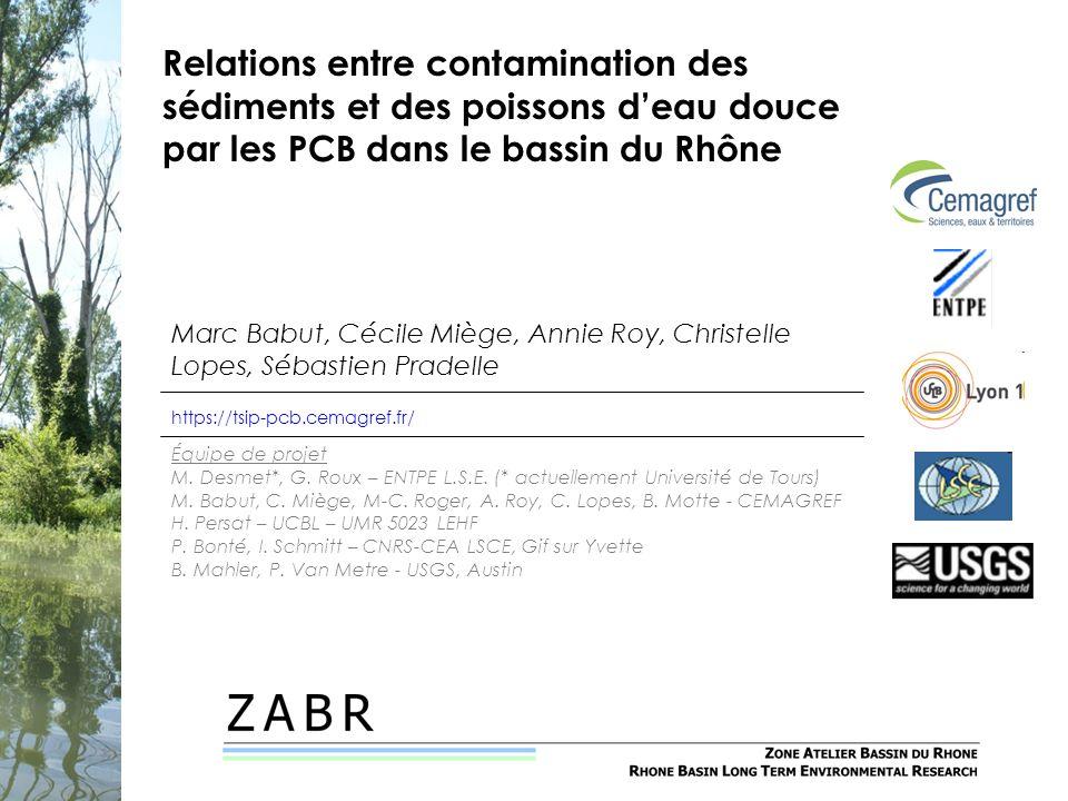 Relations entre contamination des sédiments et des poissons d'eau douce par les PCB dans le bassin du Rhône