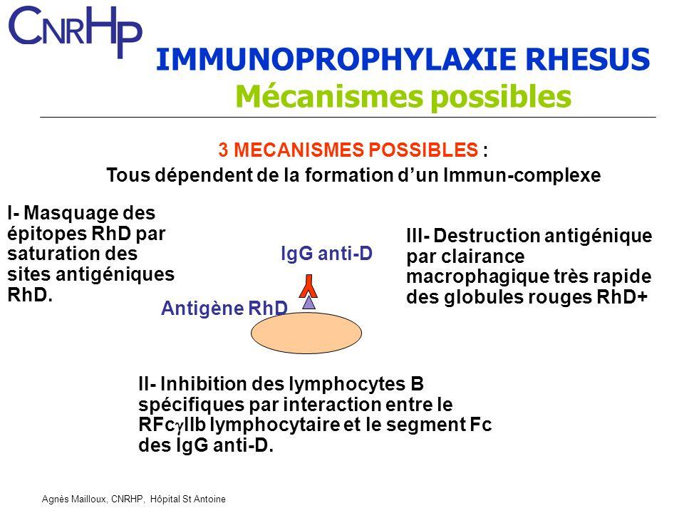 IMMUNOPROPHYLAXIE RHESUS Mécanismes possibles