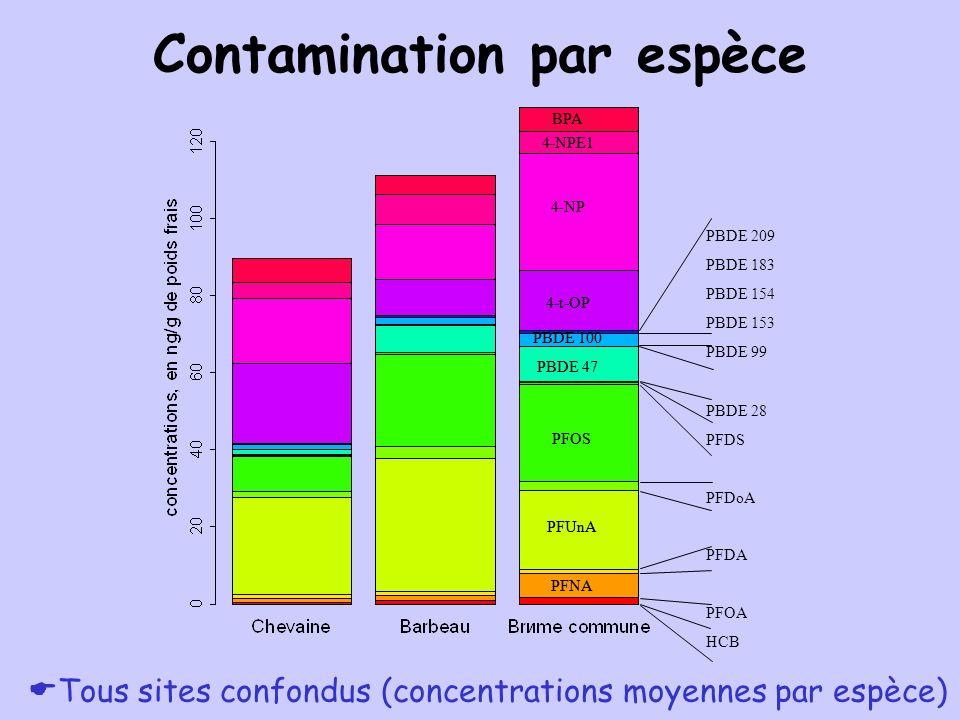 Contamination par espèce