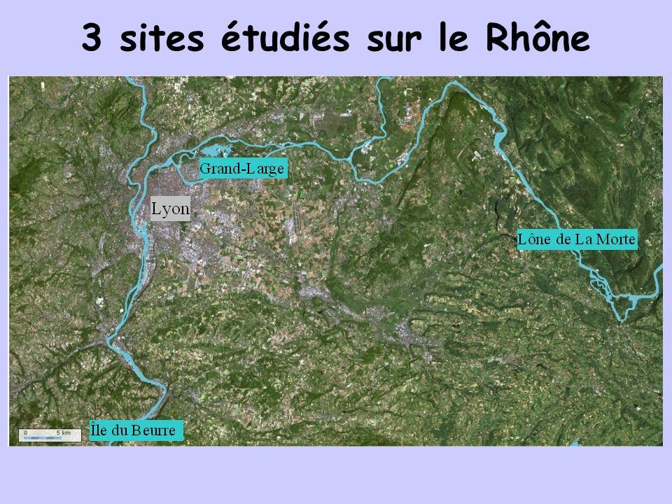 3 sites étudiés sur le Rhône
