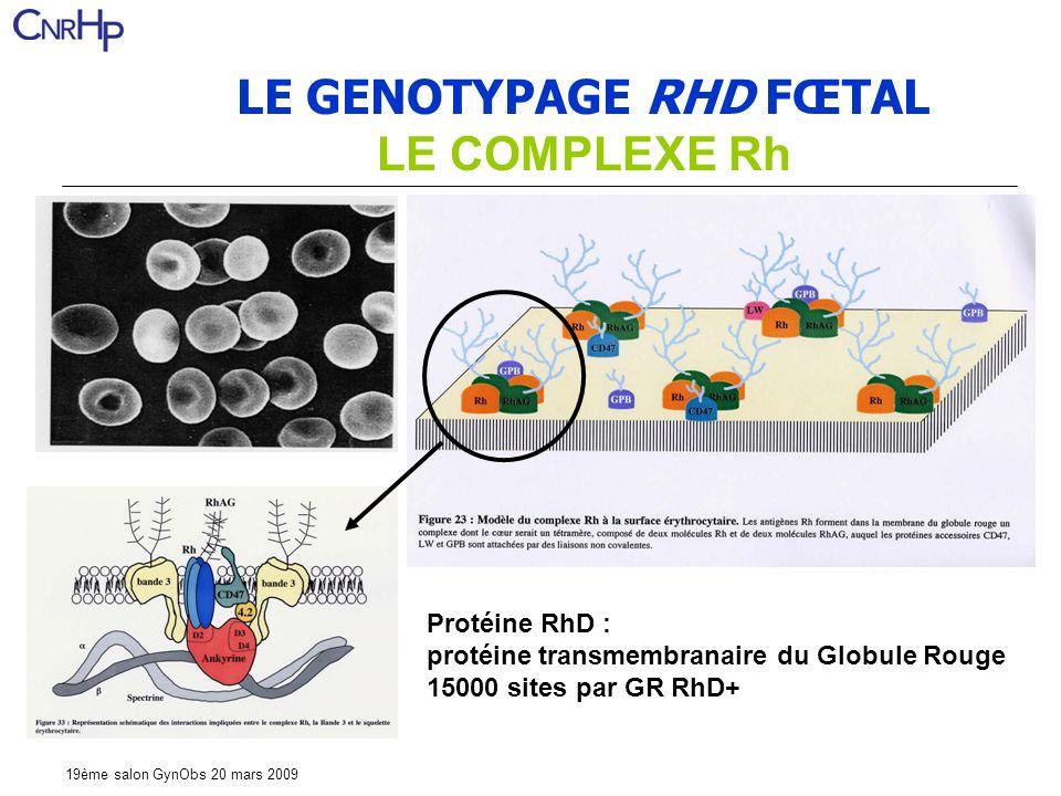 LE GENOTYPAGE RHD FŒTAL LE COMPLEXE Rh