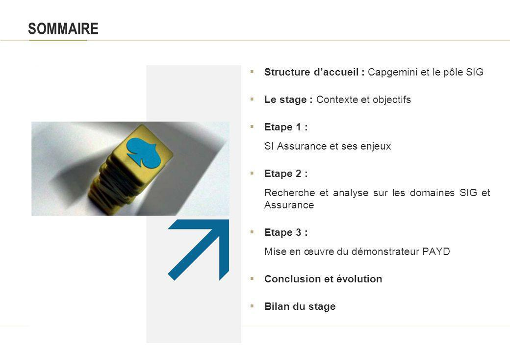 SOMMAIRE Structure d'accueil : Capgemini et le pôle SIG