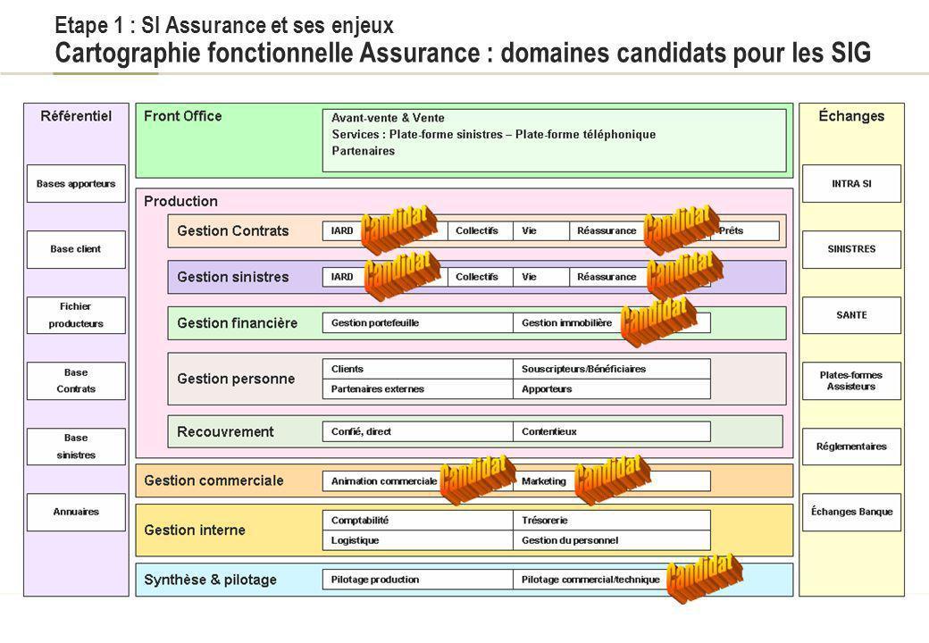 Titre du document Etape 1 : SI Assurance et ses enjeux Cartographie fonctionnelle Assurance : domaines candidats pour les SIG.