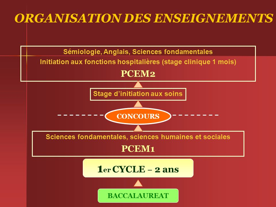 ORGANISATION DES ENSEIGNEMENTS 1er CYCLE – 2 ans