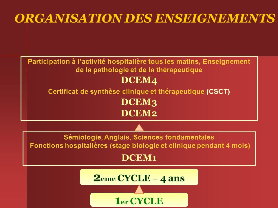 ORGANISATION DES ENSEIGNEMENTS 2eme CYCLE – 4 ans 1er CYCLE