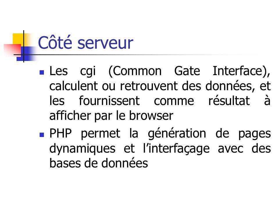 Côté serveur Les cgi (Common Gate Interface), calculent ou retrouvent des données, et les fournissent comme résultat à afficher par le browser.