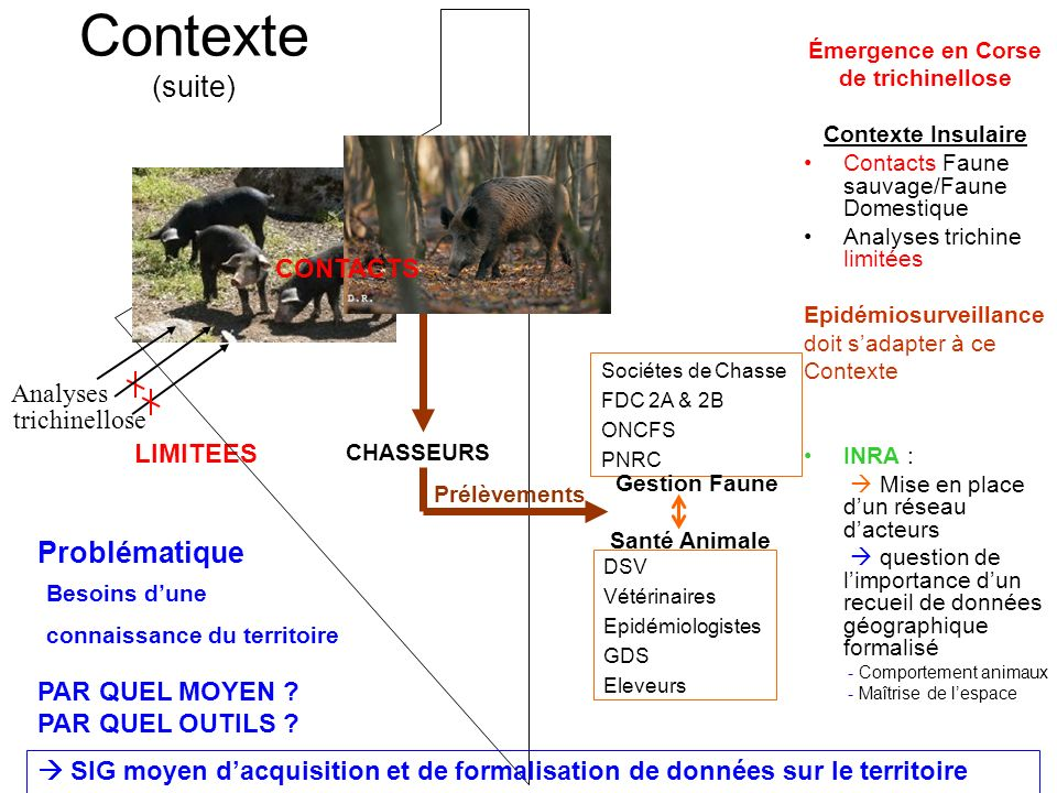 Contexte (suite) Problématique CONTACTS Analyses trichinellose