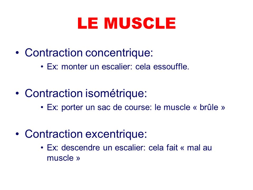LE MUSCLE Contraction concentrique: Contraction isométrique: