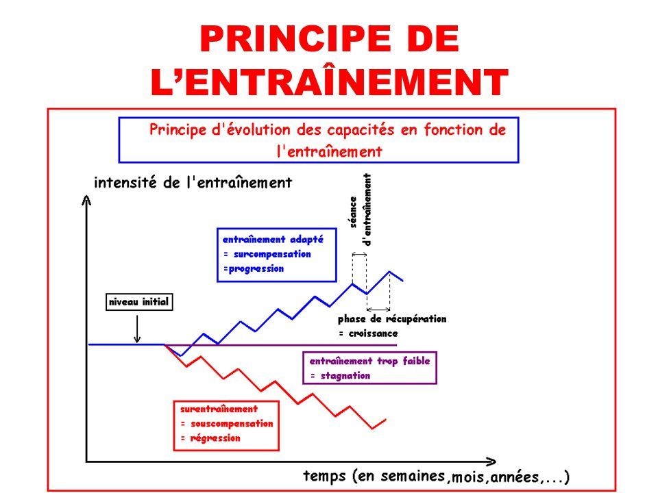 PRINCIPE DE L'ENTRAÎNEMENT