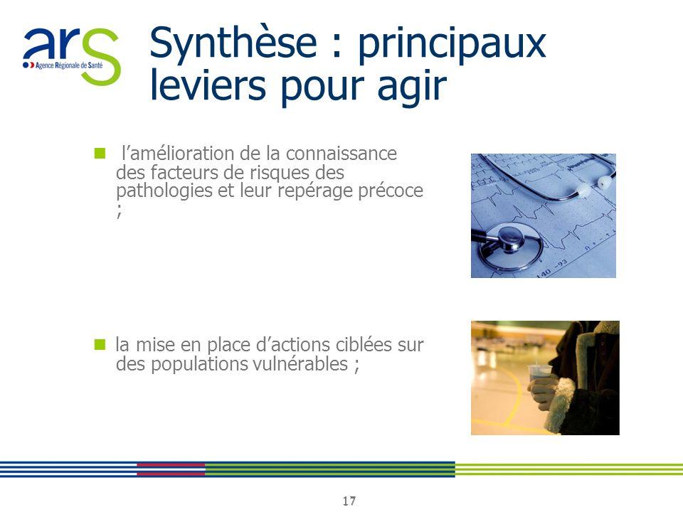 Synthèse : principaux leviers pour agir