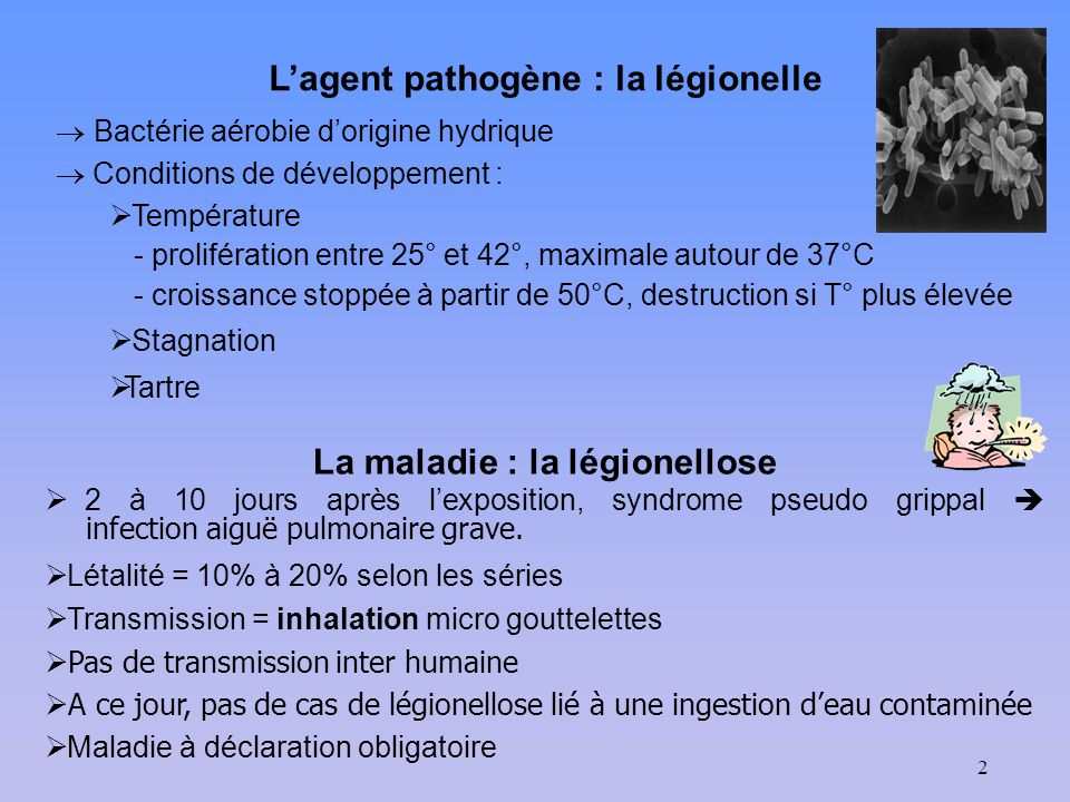 L'agent pathogène : la légionelle