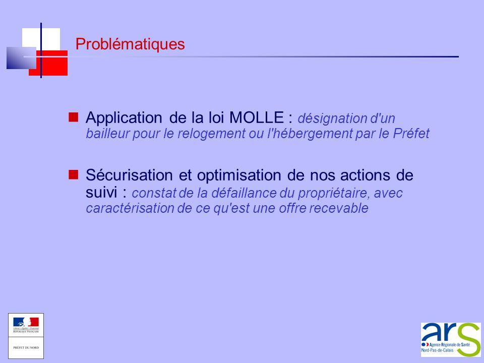 Problématiques Application de la loi MOLLE : désignation d un bailleur pour le relogement ou l hébergement par le Préfet.