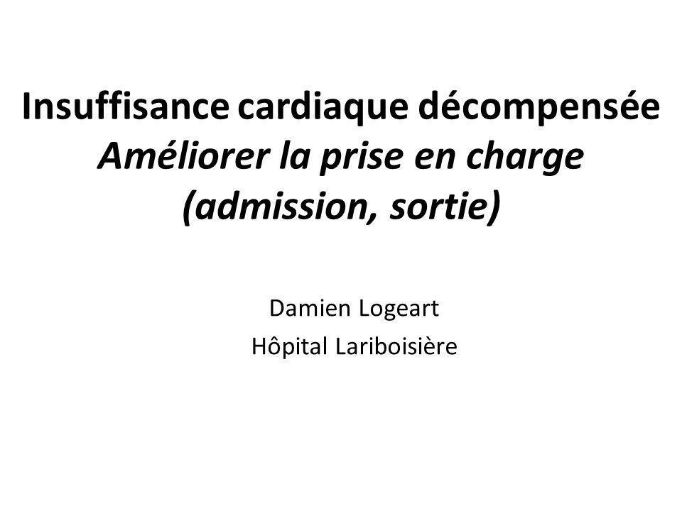 Damien Logeart Hôpital Lariboisière