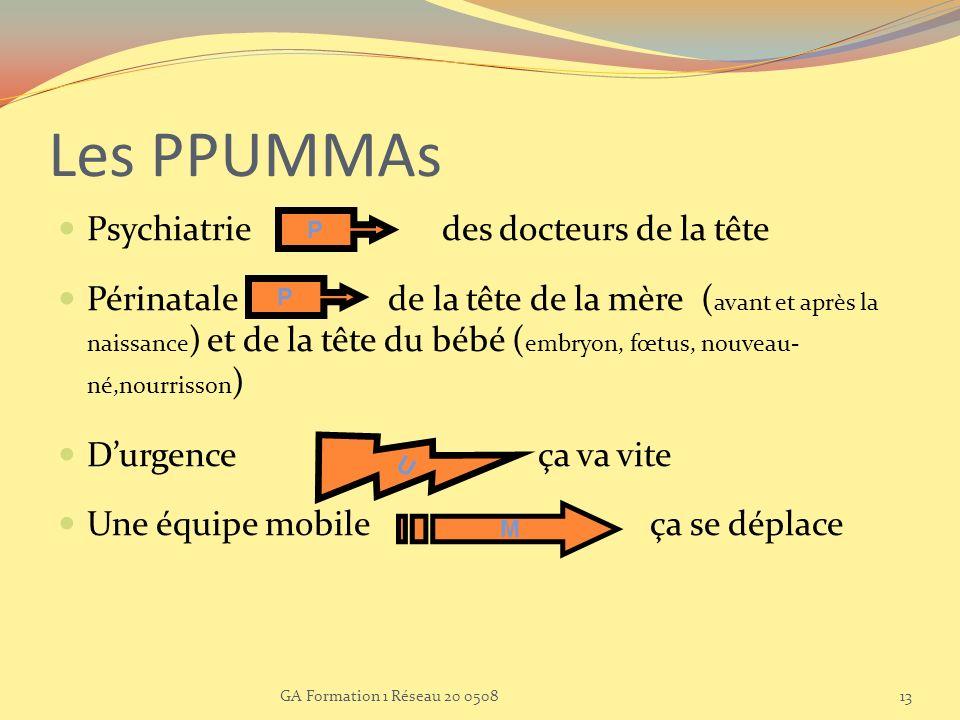 Les PPUMMAs Psychiatrie des docteurs de la tête