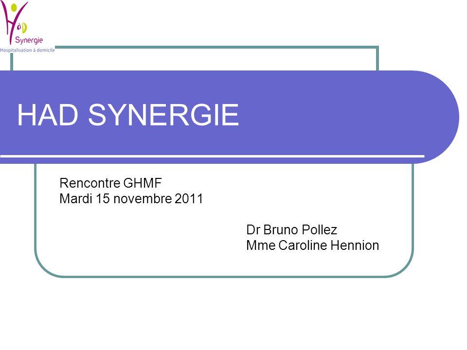 HAD SYNERGIE Rencontre GHMF Mardi 15 novembre 2011 Dr Bruno Pollez
