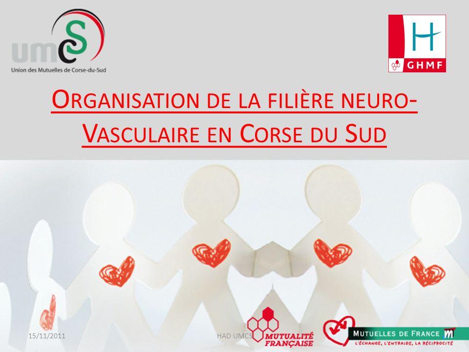 Organisation de la filière neuro-Vasculaire en Corse du Sud