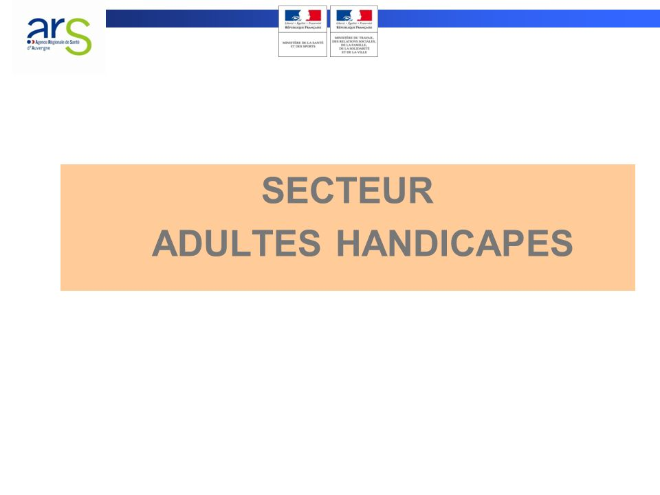 SECTEUR ADULTES HANDICAPES