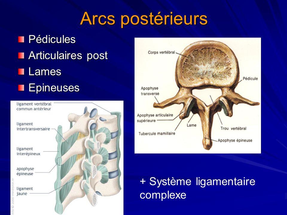 Arcs postérieurs Pédicules Articulaires post Lames Epineuses
