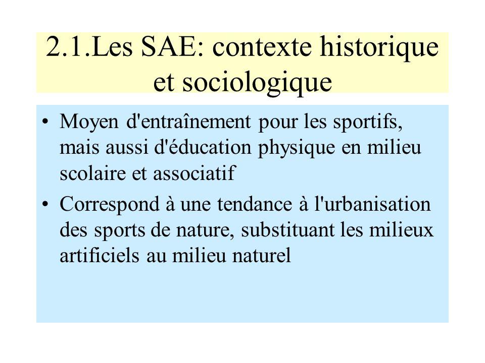 2.1.Les SAE: contexte historique et sociologique