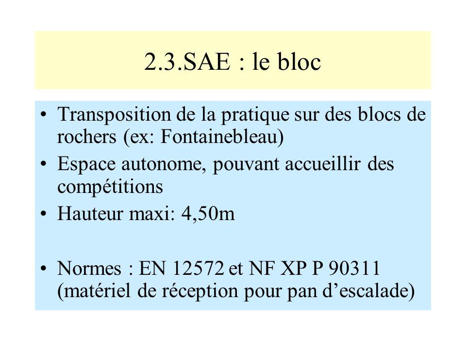 2.3.SAE : le bloc Transposition de la pratique sur des blocs de rochers (ex: Fontainebleau) Espace autonome, pouvant accueillir des compétitions.