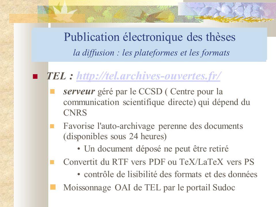 Publication électronique des thèses la diffusion : les outils