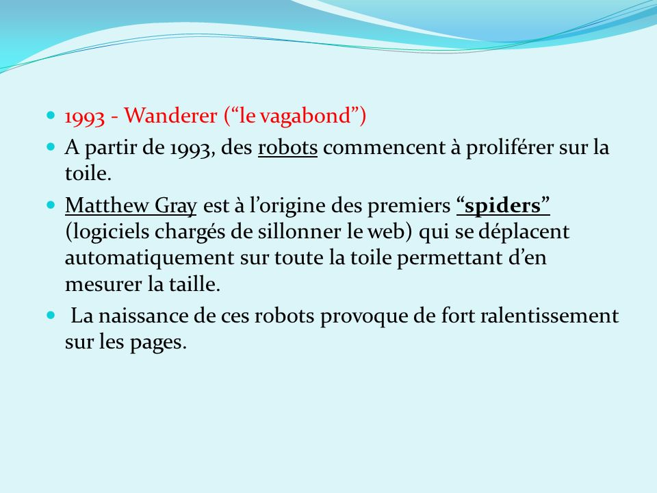 1993 - Wanderer ( le vagabond )