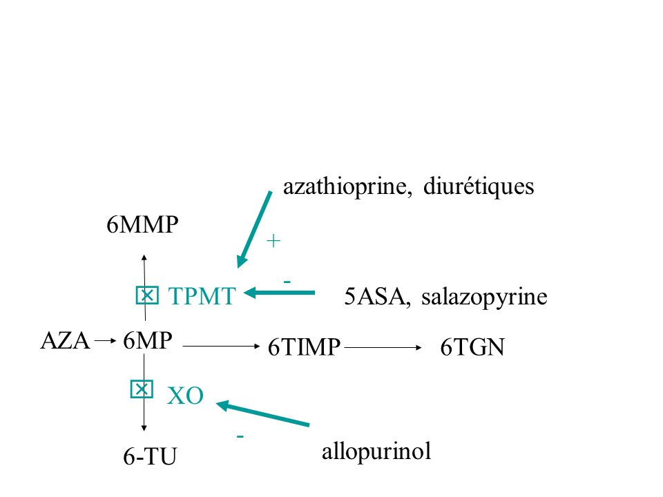 azathioprine, diurétiques