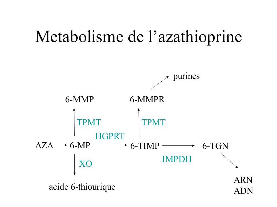 Metabolisme de l'azathioprine
