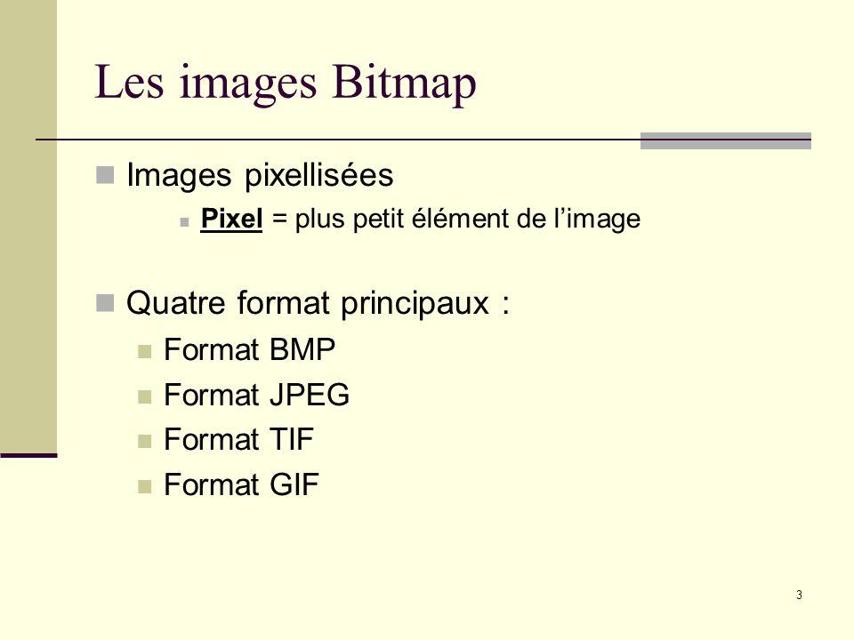 Les images Bitmap Images pixellisées Quatre format principaux :