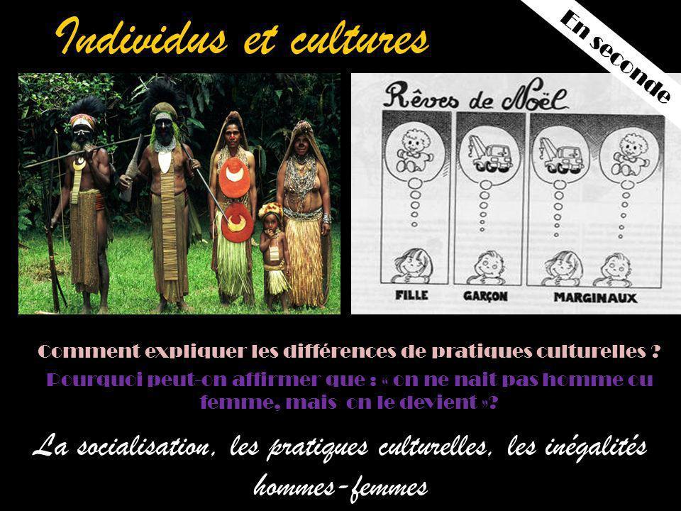 Comment expliquer les différences de pratiques culturelles