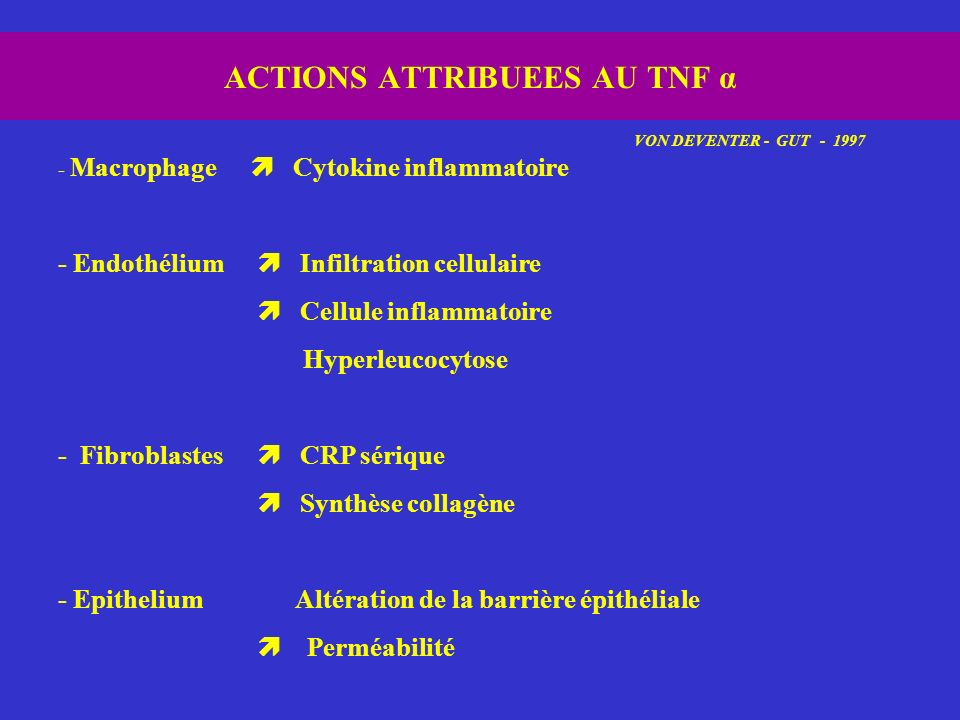 ACTIONS ATTRIBUEES AU TNF α