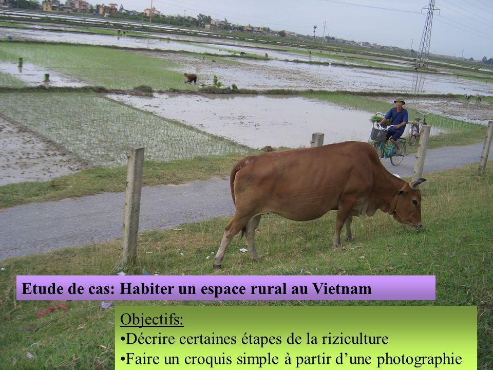 Etude de cas: Habiter un espace rural au Vietnam