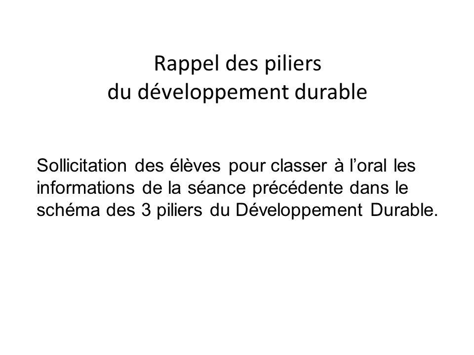 Rappel des piliers du développement durable