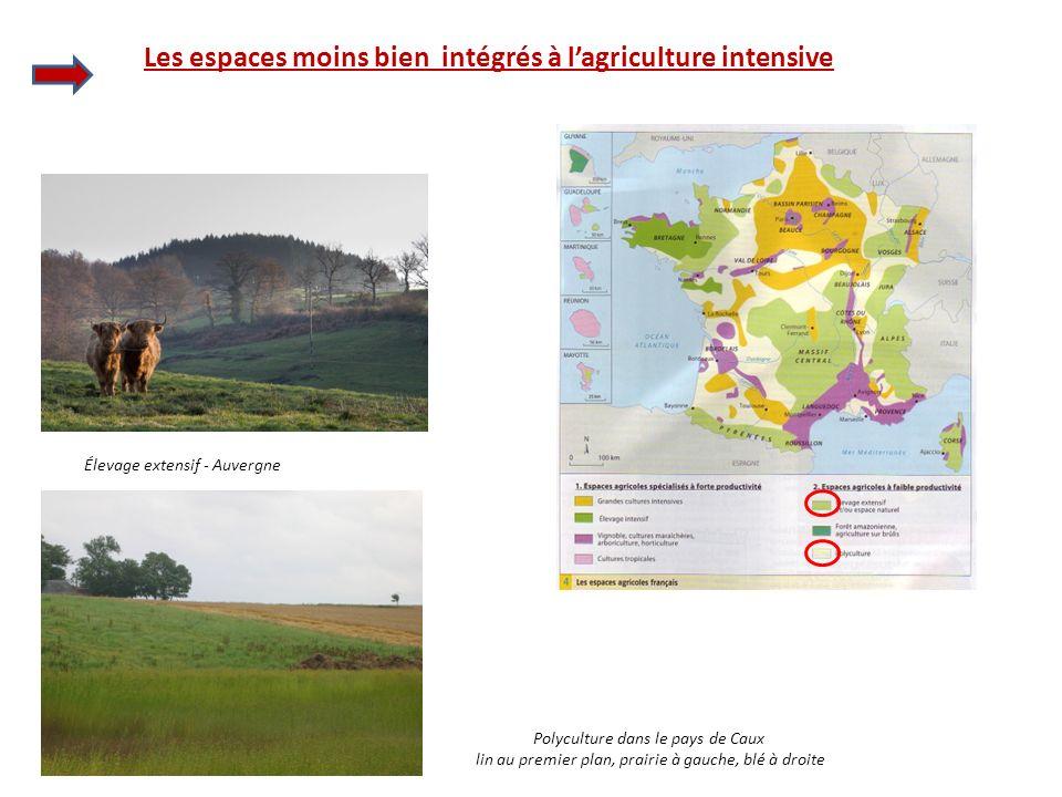 Les espaces moins bien intégrés à l'agriculture intensive